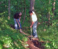 Working on Trail