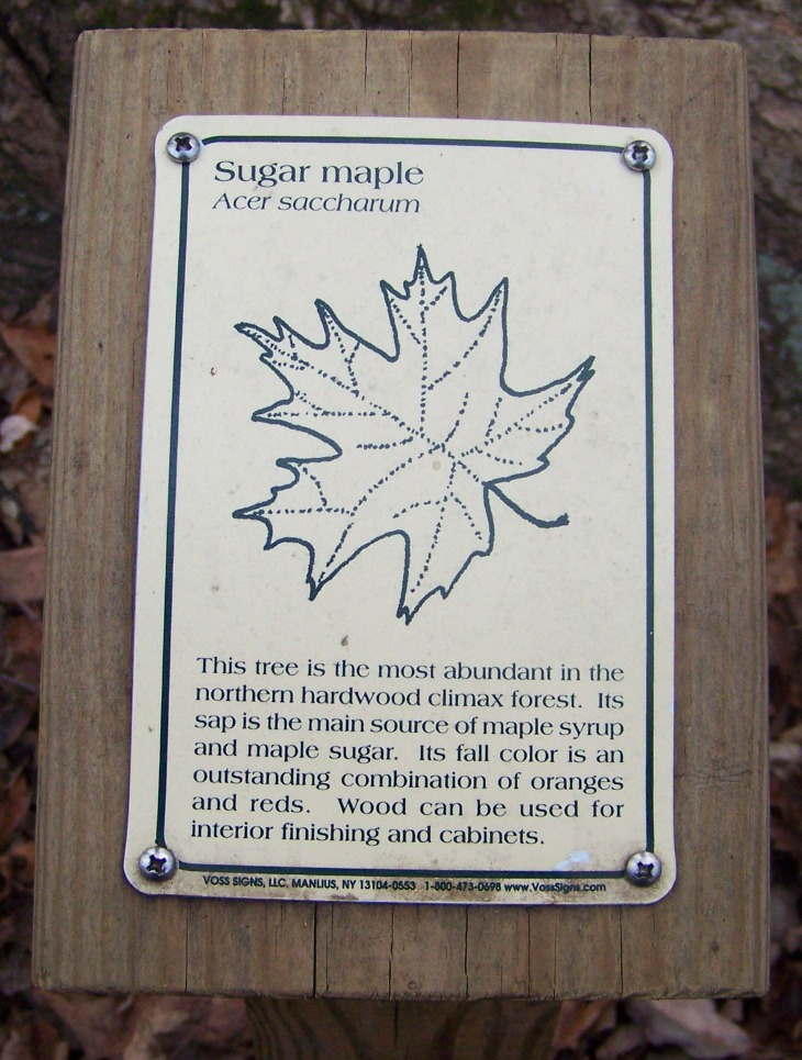 Tree Identification Sign Project